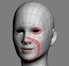 topologia costruzione del volto