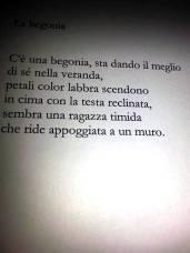 gruccia10
