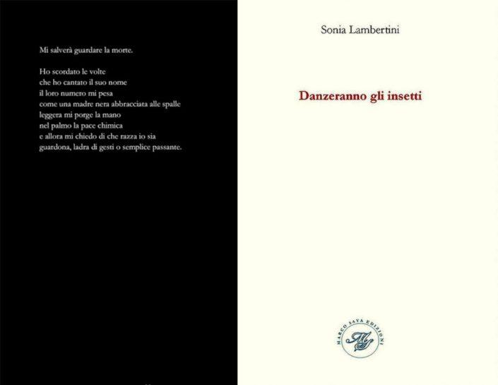 Foto-5-Sonia-Lambertini-Danzeranno-gli-insetti-1024x793