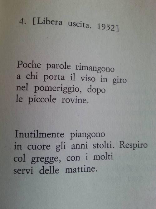fortini1